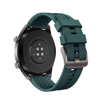 Picture of HUAWEI WATCH GT Active Titanium Grey Stainless Steel - Dark Green